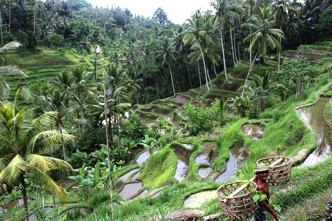 Bali River Rafting and Ubud Full Day Tour