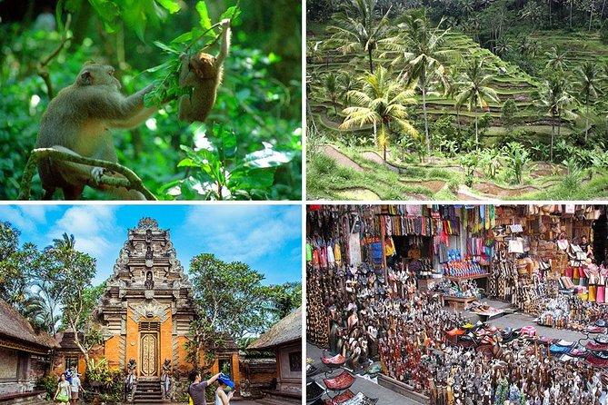 Bali Car Charter - Half Day Ubud Village Tour