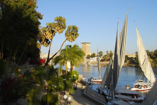 Aswan Botanical Garden and Felucca ride
