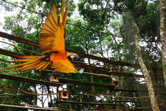 Itaipu Dam & Bird Park & Iguassu Falls Brazilian Side Gran Meliá Iguazú
