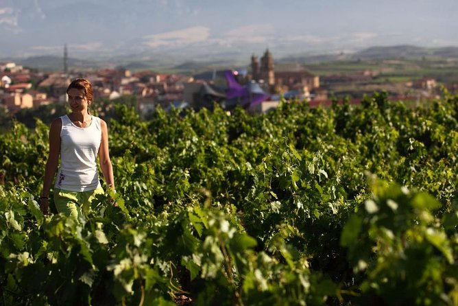Discover Rioja wine region, wineries, heritage and gastronomy tour from Bilbao