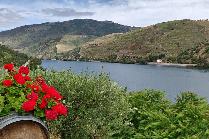 Douro Essential (half Day Private Tour, All Included)