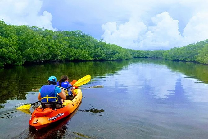 Explore the Mangrove Creeks with an All Day Tandem Kayak Rental