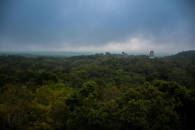 Tikal Private Sunrise Tour with Transportation