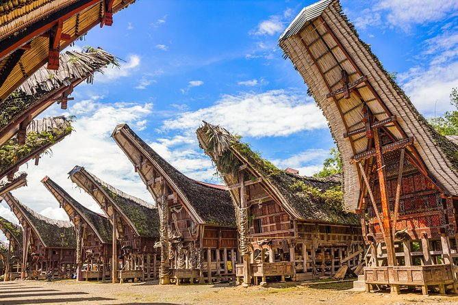 2 Days Toraja Tour