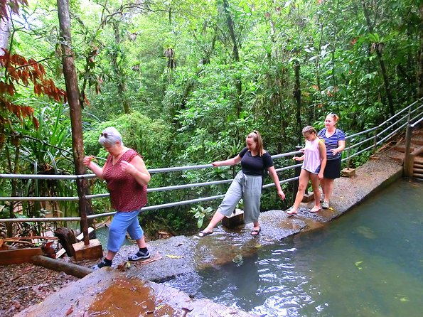 Waterfalls and Nature Tour