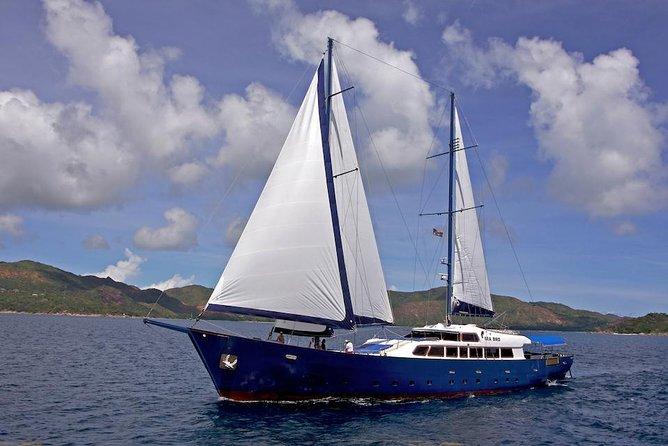 GYR- Silhouette Cruises Seychelles - Sea Bird