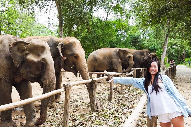 Elephant Haven Kanchanaburi with Private Transfer from Bangkok