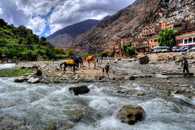 Group shared day tour to Ourika valley & Atlas Mountains photo 1