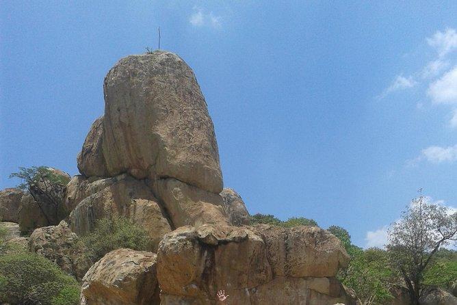 Hike, Rappel or Climb with Transport in El Diente
