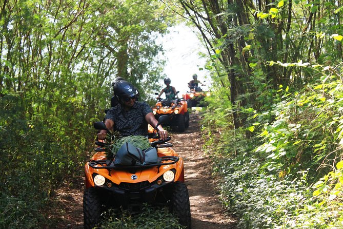 Off-Roads ADVENTURES around & inside Bora Bora by ATV / QUAD