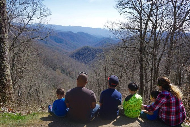 Smoky Mountain Guided Scenic High Van Tour