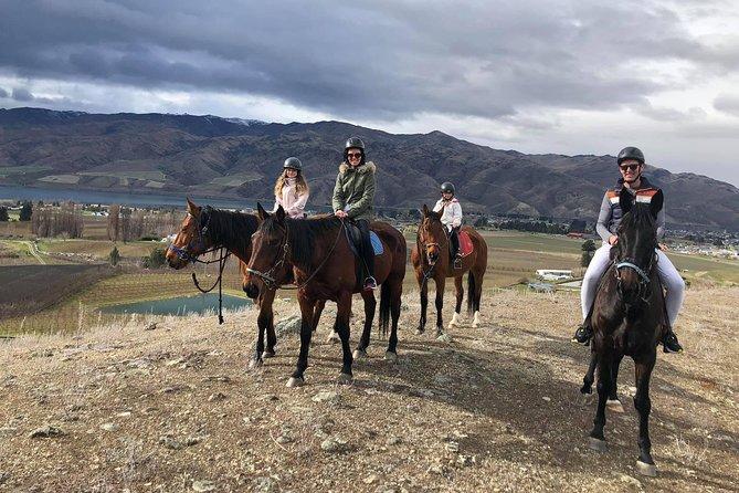 Golden Hills Horse Treks