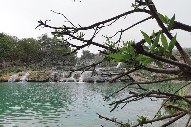 Half Day East Salalah Tour in Dhofar Mountains and Beaches By Beautiful Salalah