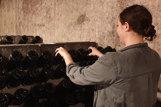 Taste champagne with a winemaker and visit his cellar. photo 11