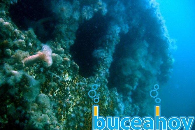 Wreck Diving - Buceo en Naufragios