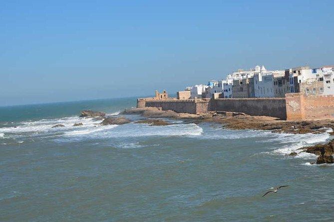 Shared Day Trip to Essaouira From Agadir