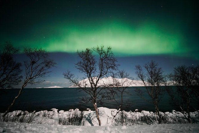 Symphony - Arctic Breeze, teamining up with nature. photo 10