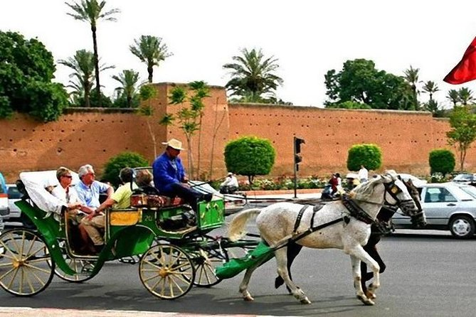 Marrakech Ramparts & Gardens Guided Tour photo 8
