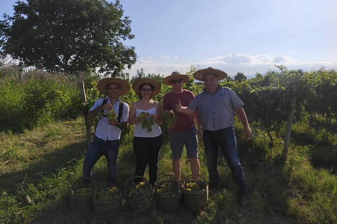 Wine tasting tour in Kakheti region