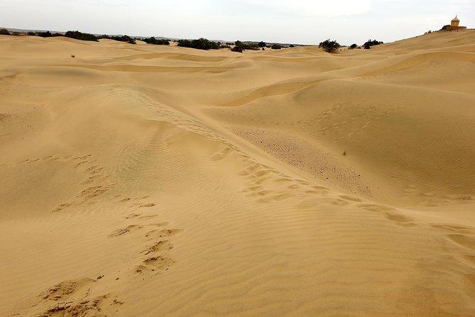 Jaisalmer One Day Sightseeing Tour