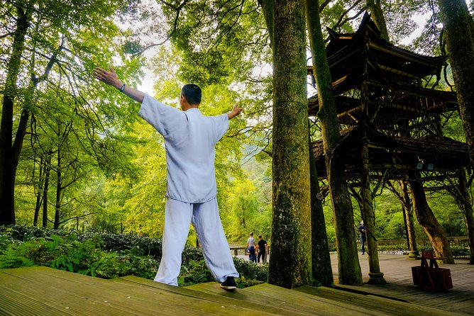 Qing Cheng mountain Taichi class & Tea-tasting experience photo 1