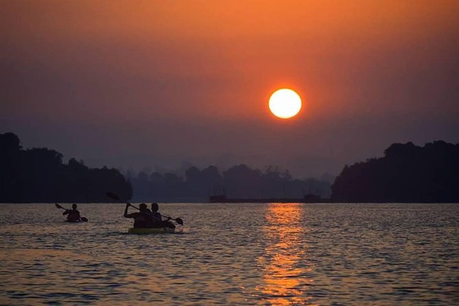 Sunrise Mangrove Kayaking Retreat - Madu River - Ahungalla