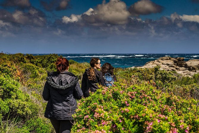 Guided Walks on the Cape to Cape - Skippy Rock