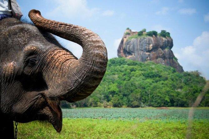 13-Day Sri Lanka Private Tour