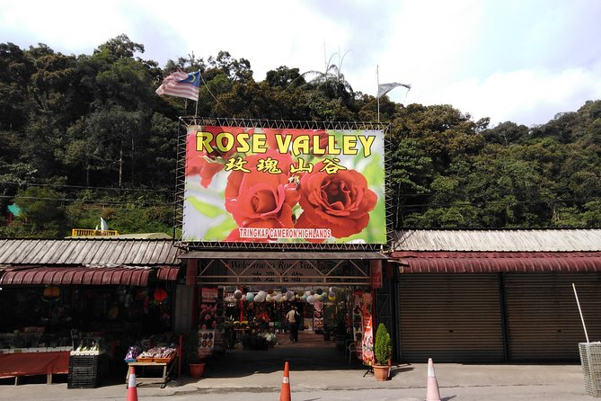 Cameron Highlands Day Trip photo 3