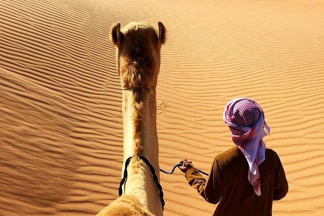 Sunrise Desert Safari from Abu Dhabi