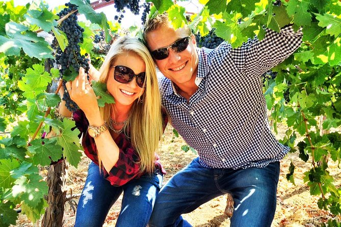 Private Winery Tour in Napa
