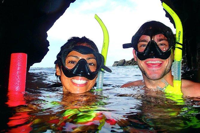 Shoreline Snorkel - Visite guidée avec tuba à la plage à Maui - Visite privée