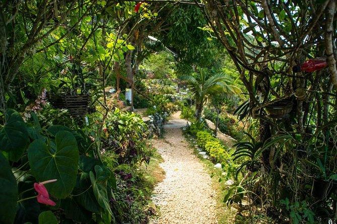 Ahhh Ras Natango Gallery and Garden Tour desde Montego Bay
