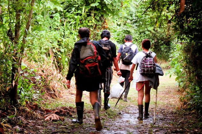 Full Day: Wonders of the Amazon River with Curassow Amazon Lodge