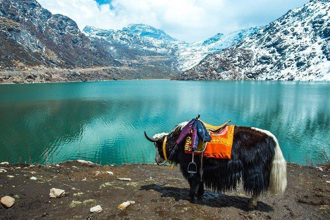 Group Tour North Sikkim 6 Days