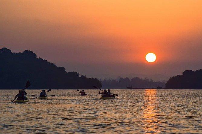 Sunrise Mangrove Kayaking Retreat - Madu River (+ Shuttle to Bentota )