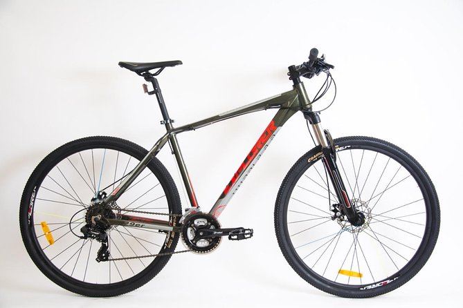 "29 ""wheeled bike rental"