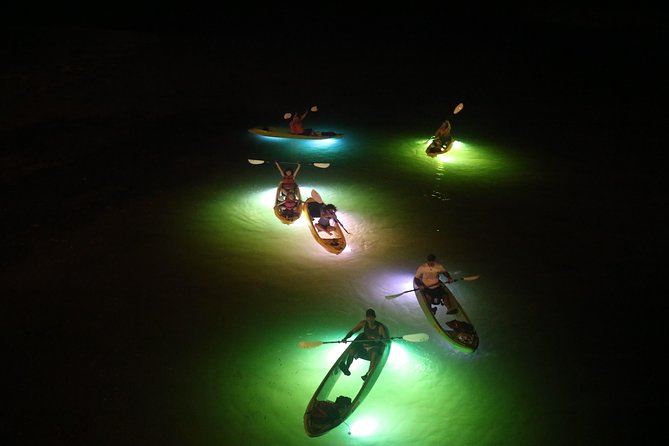 Tired of the same old attractions? Be one of the 1st to try out our Glass Bottom Kayak LED Lighted Night Tours www.glassbottomtours.com