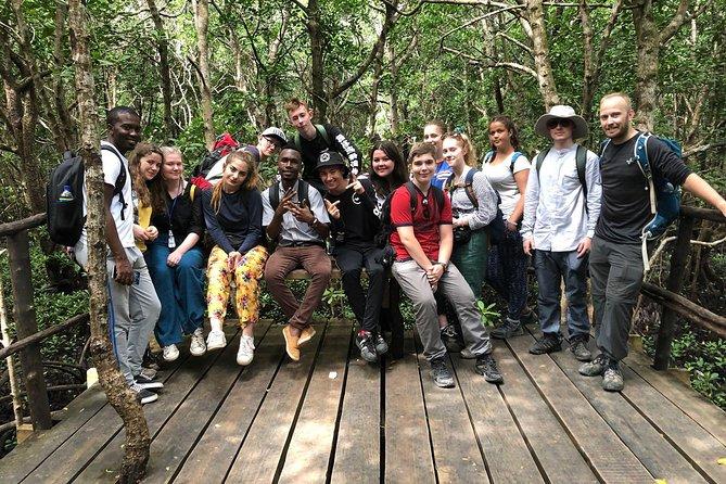 Jozan forest tour