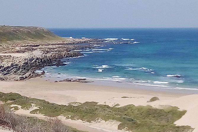 Guided Marine Walk: - Sardinia Bay (Marine Protected Area) - 2 hours