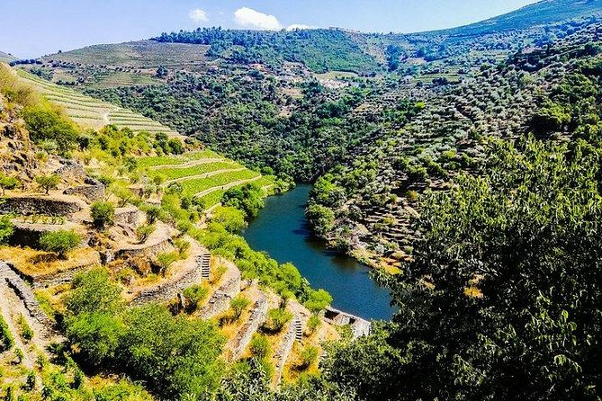Douro Valley Tour - A Delicious And Breathtaking Experience - All Included