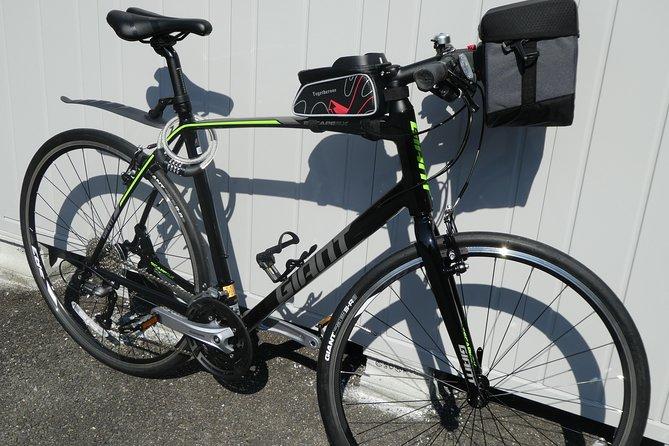 Rental of touring bikes and e-bikes