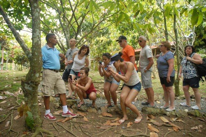 Safari Tour from Punta Cana