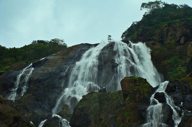 Dudhsagar Waterfall Trip in Goa