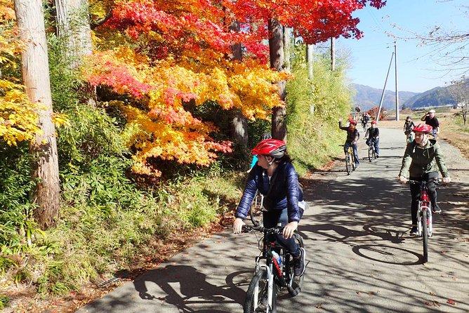 Afternoon Cycling Tour in Hida-Furukawa