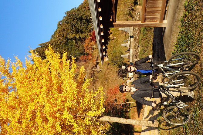 Morning Cycling Tour in Hida-Furukawa photo 7