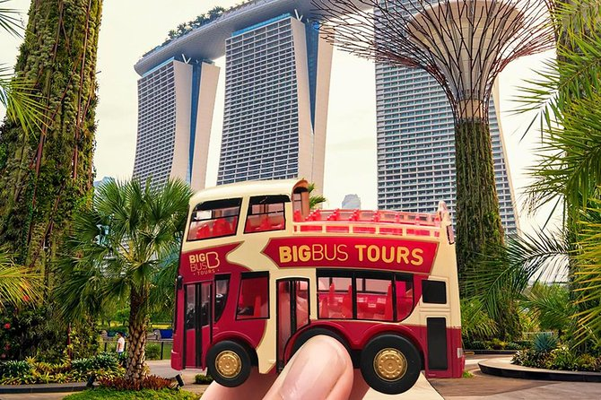 Singapore City Sightseeing Bus Tour photo 6