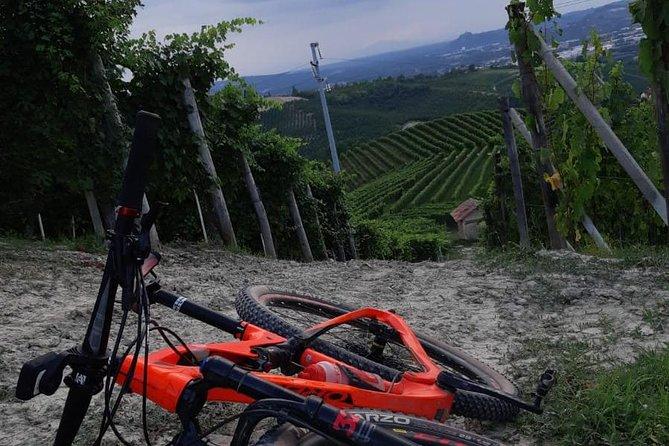 Between vineyards and hazelnuts