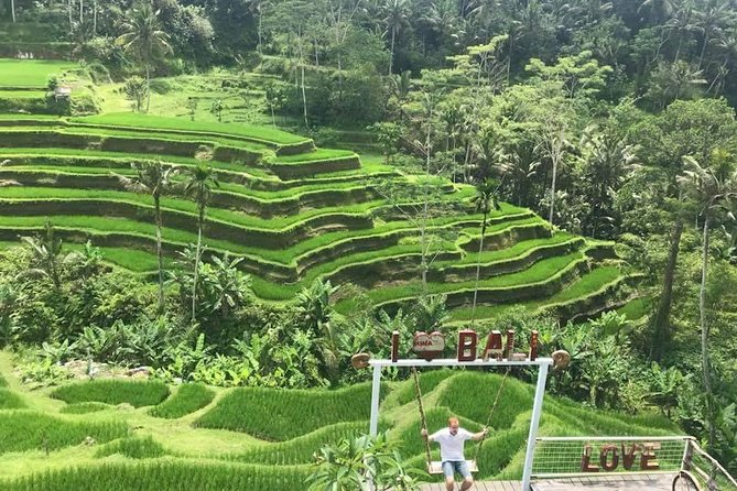 Exclusive Ubud Sightseeing Tour - Instagramable Spot and More photo 3